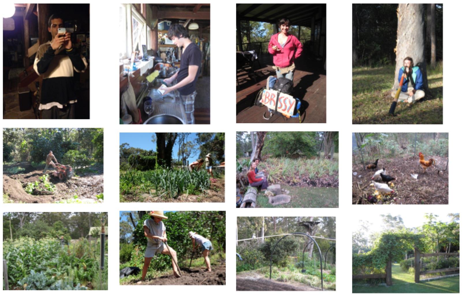 people and garden(2).jpg